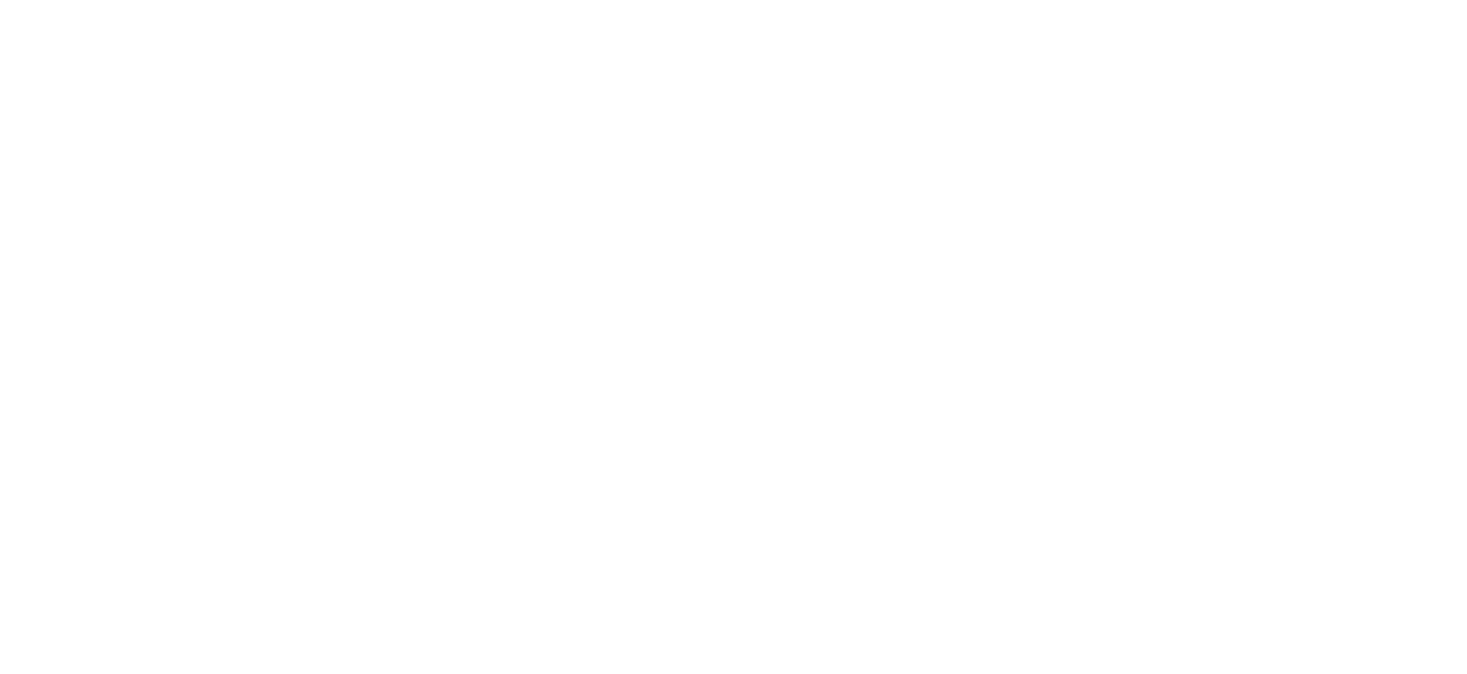 Action Plus Bail Bonds Logo