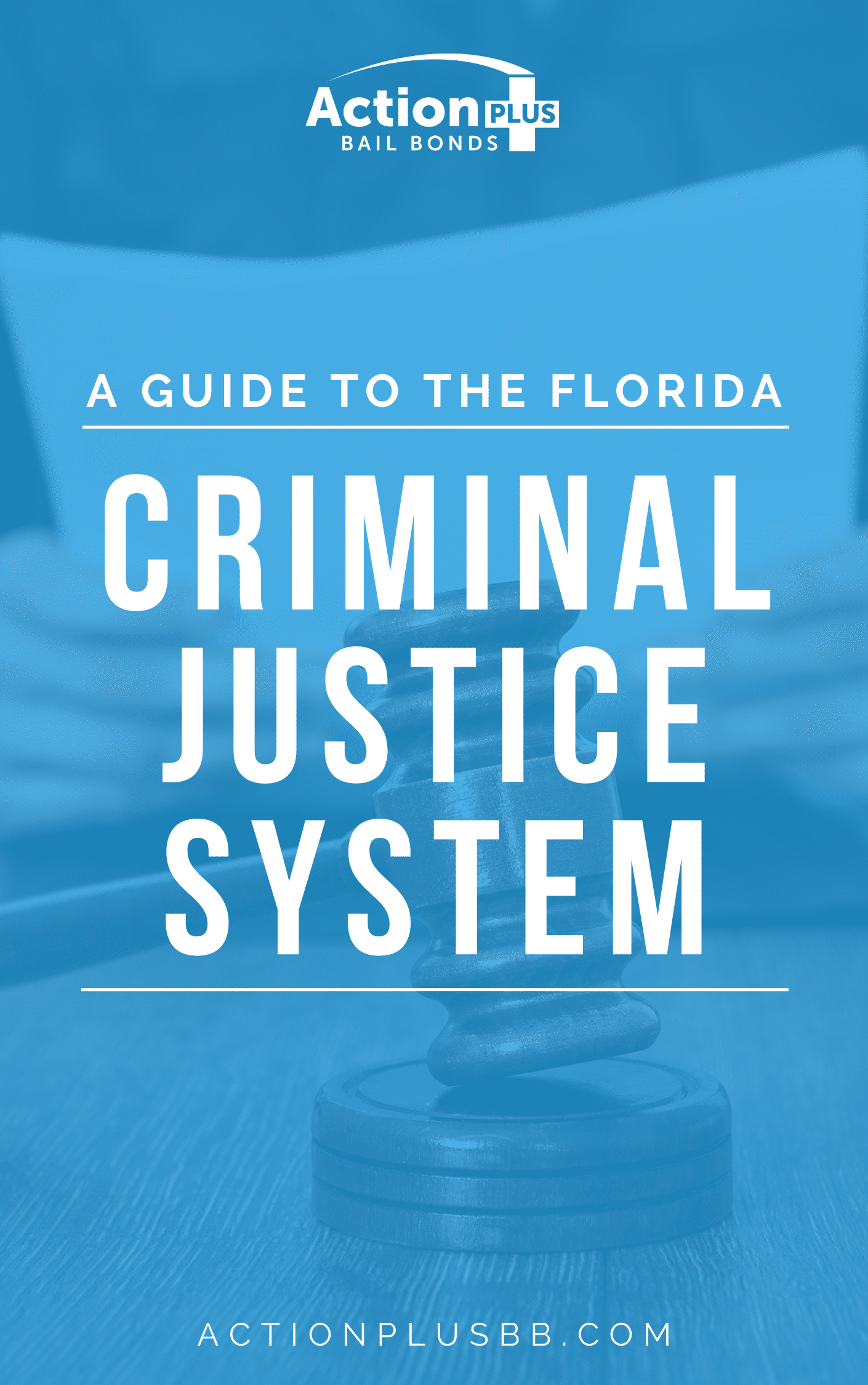 Criminal Justice Guide Cover